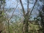 Looking towards Sandy Island and Mabouya