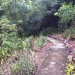 Path leadi...