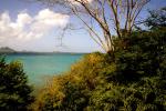 Garden view over Hillsborough Bay