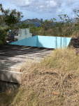 Plunge pool with greenheart deck