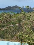 View across Hillsborough Bay